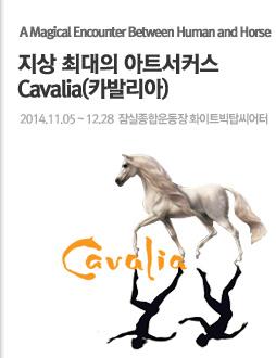 ���� �ִ��� ��Ʈ��Ŀ�� [Cavalia(ī�߸���)]